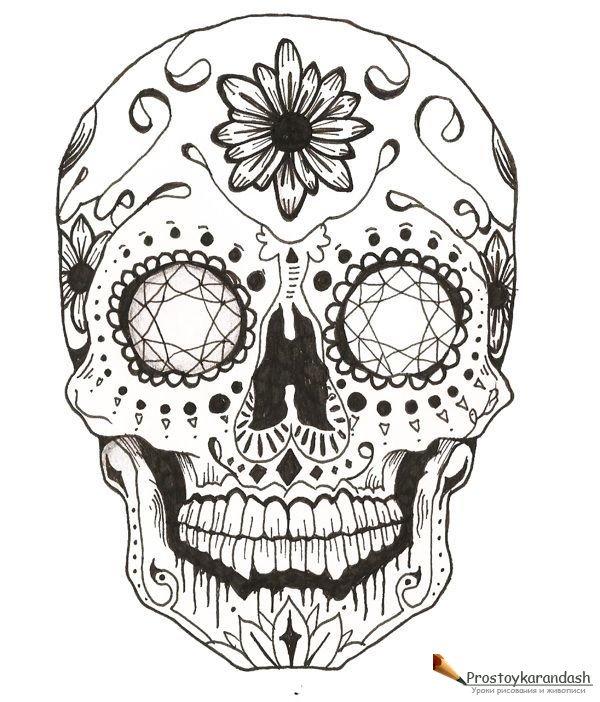 раскраски антистресс черепа с цветами как рисовать