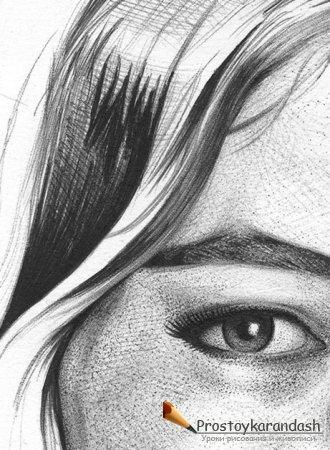 Уроки рисования карандашом поэтапно для начинающих