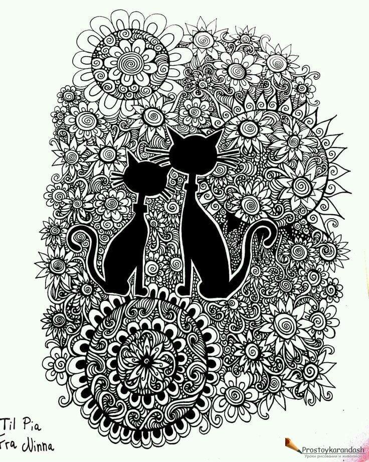 кошки раскраски антистресс как рисовать поэтапно уроки
