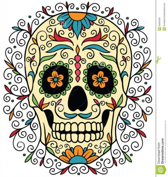 Раскраски антистресс черепа с цветами » Как рисовать ...